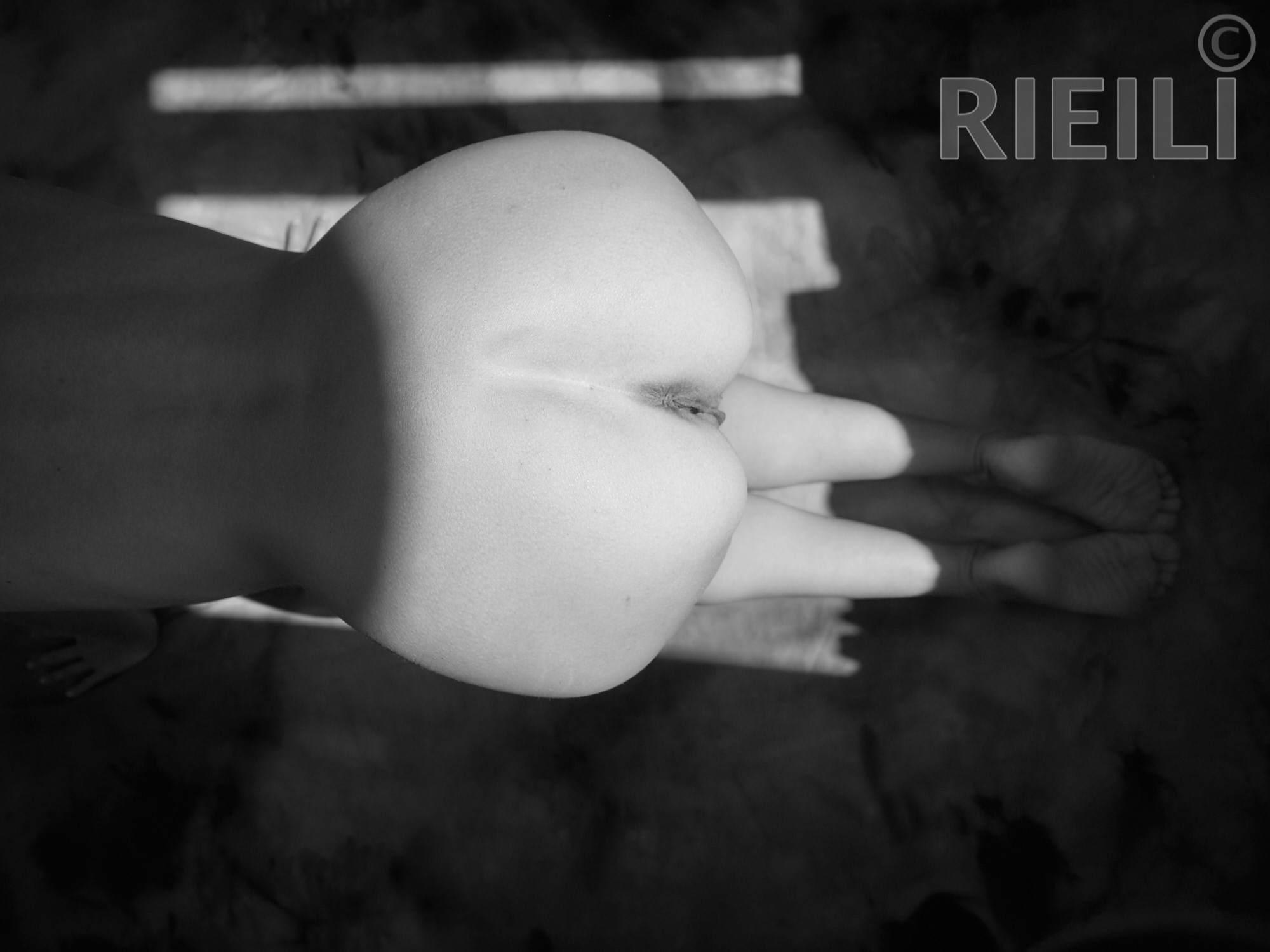RL540137-RIEILI